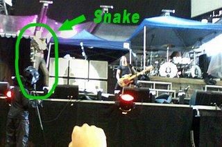 Alice + Snake
